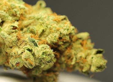 Streckmittel in Cannabis